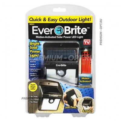 Светильник на солнечных батареях Ever brite оптом